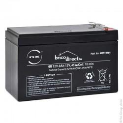 Batterie Plomb AGM HR 12V-9Ah T2 NX