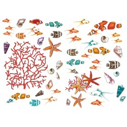 Sticker mural CORAIL XL