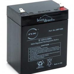 Batterie Plomb AGM 12V-2.9Ah T1 NX