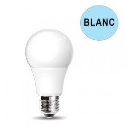 Ampoule LED E27 Blanc Froid 12W LUXRAM