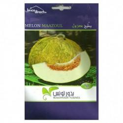 Graines semis Melon Maazoul بطيخ معزول